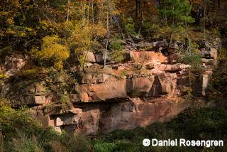 Rocks in the beech forest in Rothenbuch, Bavaria, Germany. © Daniel Rosengren