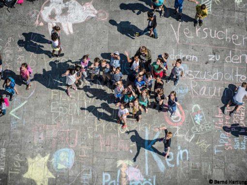 Schuljahr der Nachhaltigkeit (2017)